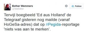 Telegraaf over connectie Wagensveld en HoGeSa