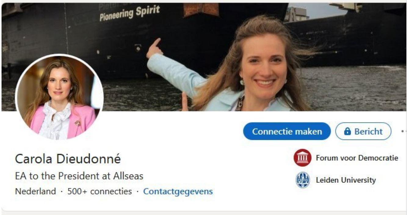 Screenshot LinkedIn Carola Dieudonné